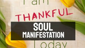 Soul Manifestation Review